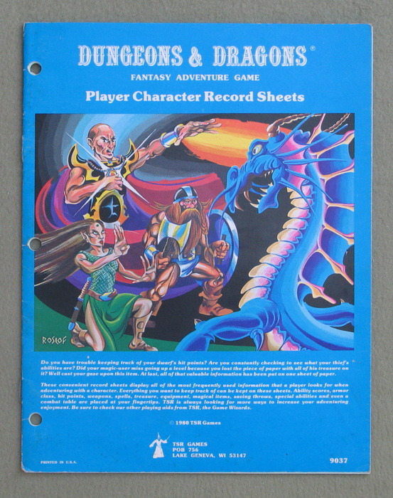 Image for Player Character Record Sheets (Dungeons & Dragons)