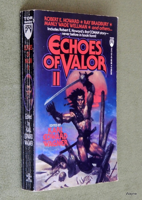 Image for Echoes of Valor II