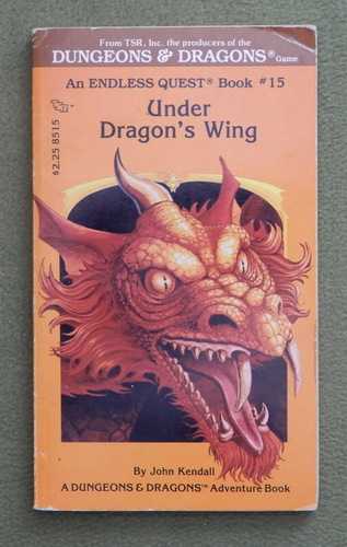 Image for Under Dragon's Wing (Endless Quest Book 15: Dungeons & Dragons)