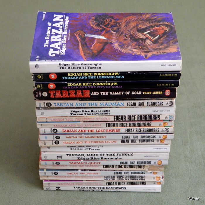 Image for Tarzan series (19 books)