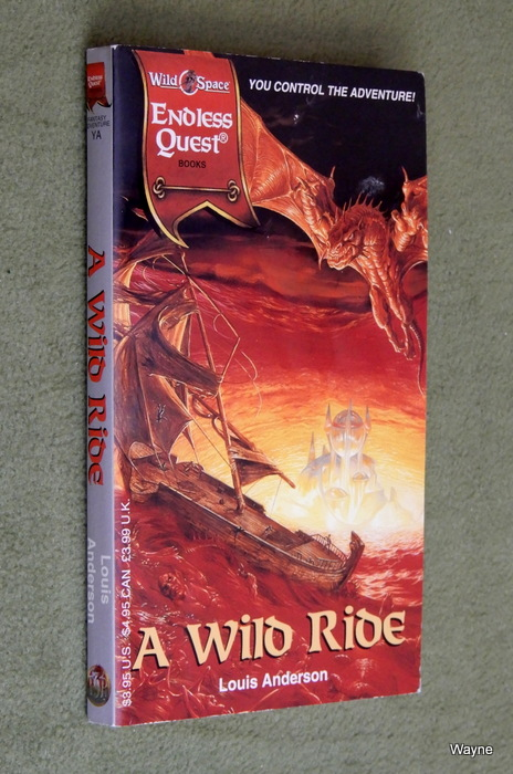 Image for A Wild Ride (Endless Quest Book: Wildspace Setting)