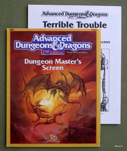 Image for Dungeon Master's Screen (Advanced Dungeons & Dragons Dungeon Master Accessory REF1)