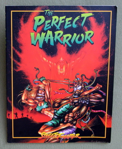 Image for Perfect Warrior (Street Fighter)