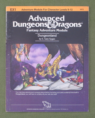 Image for Dungeonland (AD&D Module EX1)