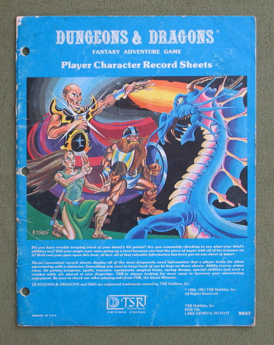 Image for Player Character Record Sheets (Dungeons & Dragons) - PLAY COPY