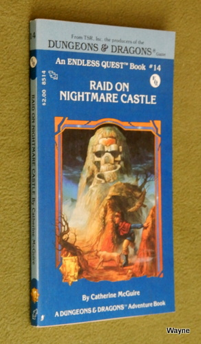 Image for Raid on Nightmare Castle (Endless Quest Book 14: Dungeons & Dragons)