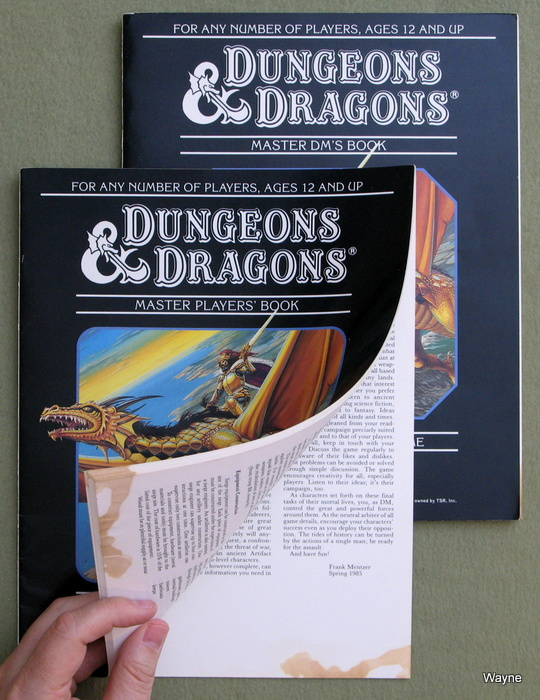 Image for Dungeons & Dragons Master Player's Book & Master DM's Book [BOOKS ONLY] - PLAY SET