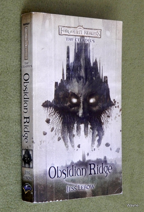 Image for Obsidian Ridge (Forgotten Realms: The Citadels, Bk. 2)