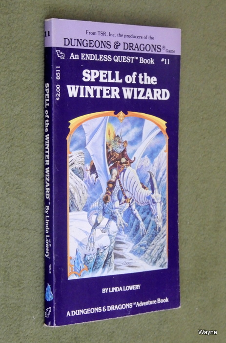 Image for Spell of the Winter Wizard (Endless Quest Book 11: Dungeons & Dragons)