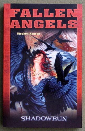 Image for Fallen Angels (Shadowrun: GERMAN-language edition)