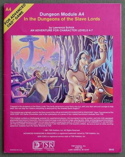 Image for In the Dungeons of the Slave Lords (Advanced Dungeons & Dragons module A4)